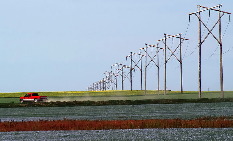 File:Prairie Rainbow Canola Flax.jpg