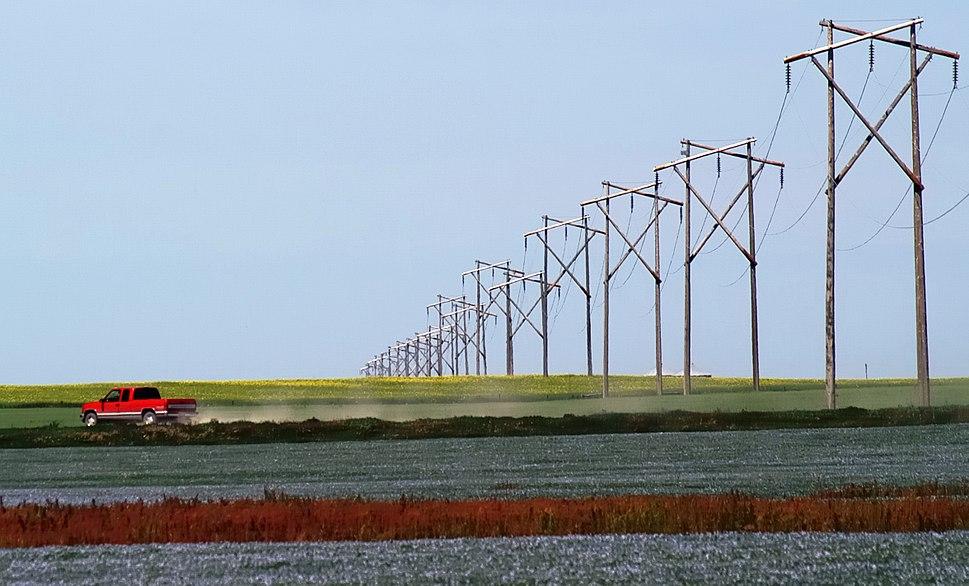 Prairie Rainbow Canola Flax