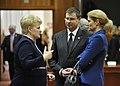 Premjers V.Dombrovskis piedalās Eiropadomē (6944567473).jpg