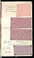 Printer's Sample Book, No. 19 Wood Colors Nov. 1882, 1882 (CH 18575281-43).jpg