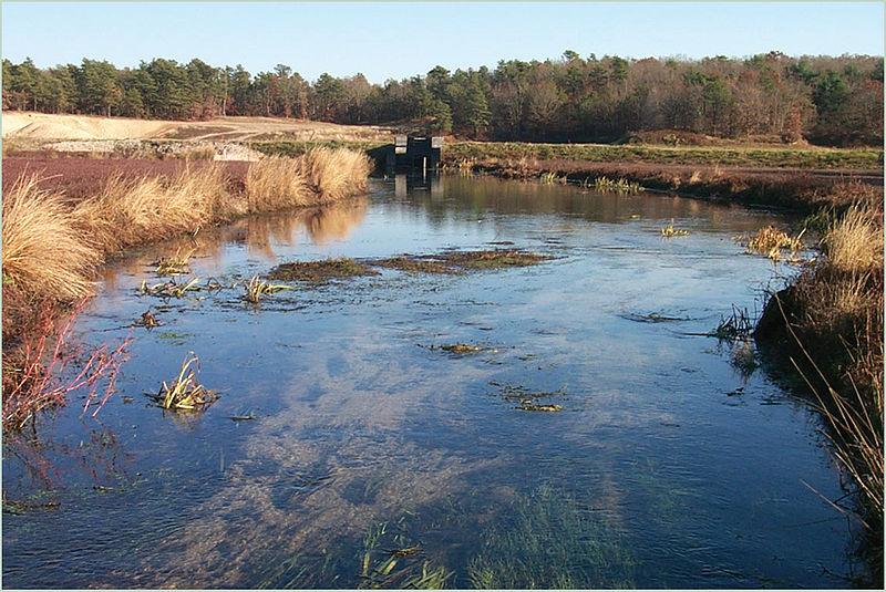 File:Quashnet River photo.jpg