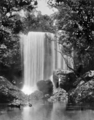 Queensland State Archives 861 Fisher Falls Innisfail North Queensland c 1927.png