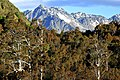 Queenstown-Lakes 21.jpg