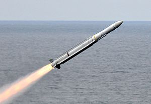 RIM-162 ESSM launched from USS Carl Vinson.jpg