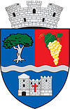 Coat of arms of Șimleu Silvaniei