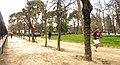 RUNNING RETIRO - panoramio.jpg