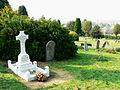 Radnor Street cemetery, Swindon - geograph.org.uk - 1496216.jpg