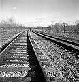Railroad Tracks, Texas and Pacific Railway Company (16108978610).jpg