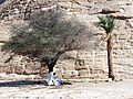 Ramsis, Aswan Governorate, Egypt - panoramio (2).jpg