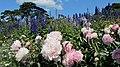 Ratley and Upton OX15, UK - panoramio (1).jpg
