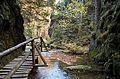 Rešovské vodopády na podzim 15.jpg