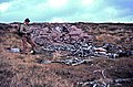 Remains of a plane crash from WW2 - geograph.org.uk - 648692.jpg