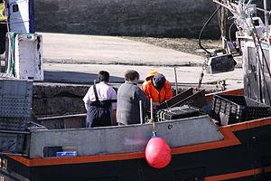 Retour de la pêche à la seiche du fileyeur Jason IV (6).JPG
