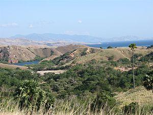 Lesser Sunda Islands - Rinca island