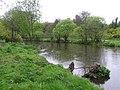 River Camowen, Omagh - geograph.org.uk - 1271009.jpg