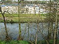 River Derwent and houses - geograph.org.uk - 775568.jpg