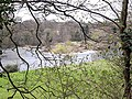 River Eden near Holmwrangle - geograph.org.uk - 1237800.jpg
