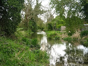 Lambourn - River Lambourn