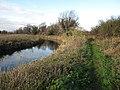 River Lark - geograph.org.uk - 1639480.jpg