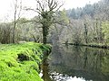 River Tavy, Buckland Abbey Estate - geograph.org.uk - 403002.jpg