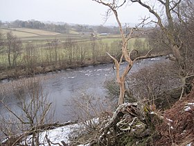 River Tees from the Pennine Way near Dent Bank.jpg