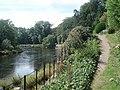 Riverside path at The Weir Garden - geograph.org.uk - 545546.jpg