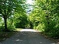 Road - panoramio - ---=XEON=--- (3).jpg