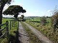 Road to Porth-y-morddwr - geograph.org.uk - 588295.jpg