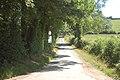 Road towards railway crossing at Rhydwhyman - geograph.org.uk - 1368594.jpg