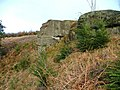 Rock Outcrop, Thimbleby Bank - geograph.org.uk - 154655.jpg