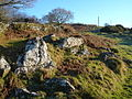 Rocks by the path above Cudlipptown - geograph.org.uk - 297384.jpg