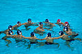 Romania water polo team huddle.jpg