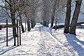 Rosegg Allee südlich von Schloss Rosegg 31122010 7253.jpg