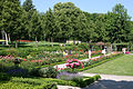 RosengartenBern02.jpg