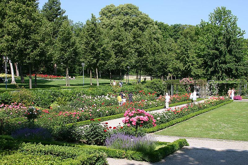 File:RosengartenBern02.jpg