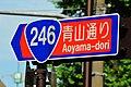 Route246-Aoyama-dori.JPG