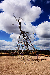 Roxy Paine - Inversion 02.jpg