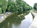 Royal Canal Downstream of the 11th Lock, Castleknock, Co. Dublin - geograph.org.uk - 857716.jpg