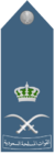 Royal Saudi Air Force -Air Vice-Marshal.png