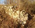 Ruine-eselsburg2.jpg