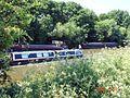 Rush hour on the River Weaver - geograph.org.uk - 184425.jpg