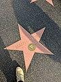 Russell Crowe Hollywood Star.jpg
