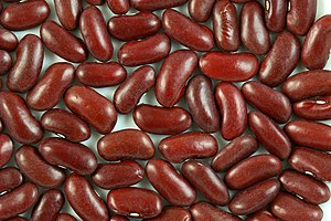 High Resolution Image of Kidney Beans. Françai...