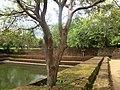 Sacred City of Pollonnaruwa, Polonnaruwa, Sri Lanka - panoramio (23).jpg