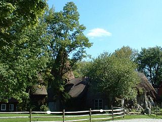 Tyringham, Massachusetts Town in Massachusetts, United States