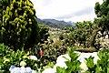 Santana, Madeira - 2009-06-26 12-38-01.jpg