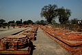 Sarnath Excaveted Site 03.JPG