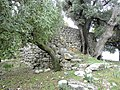 Saydet Habil - panoramio.jpg