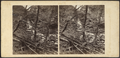 Scene in the Catskill Mountains, after a flood, by London Stereoscopic View Co..png