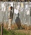 Scenes from Bahir Dar, Ethiopia (2210163426).jpg